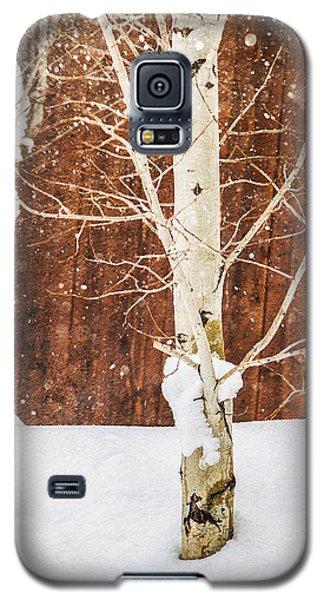 Holiday Aspens Galaxy S5 Case