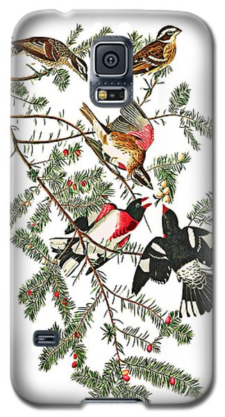 Galaxy S5 Case featuring the photograph Holiday Birds by Munir Alawi