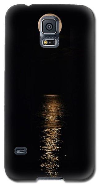 Holiday Magic - Lunar Art Galaxy S5 Case