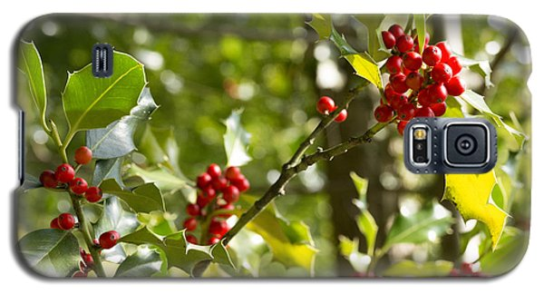 Galaxy S5 Case featuring the photograph Holly With Berries by Chevy Fleet
