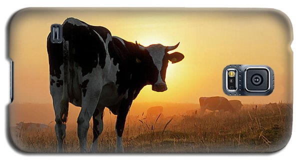 Holstein Friesian Cow Galaxy S5 Case