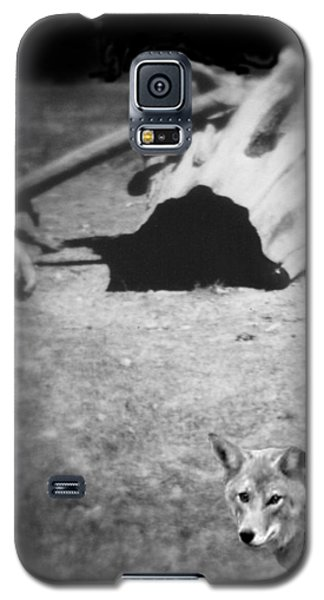 Homage To Josef Beuys Galaxy S5 Case by Ann Tracy