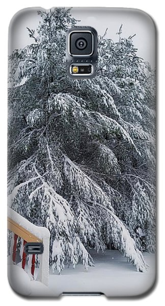 Home For The Blizzard Galaxy S5 Case