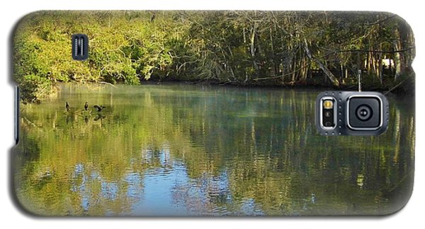 Homosassa River Galaxy S5 Case by D Hackett