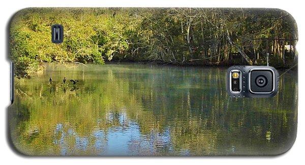 Homosassa River Galaxy S5 Case