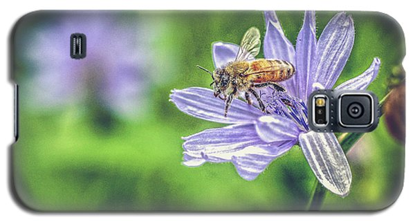 Honey Bee And Flower Galaxy S5 Case