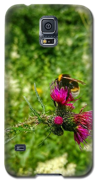 Honey Bee Galaxy S5 Case