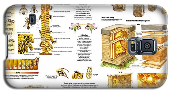 Galaxy S5 Case featuring the drawing Honey Bees Infographic by Gina Dsgn