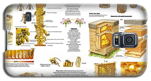Honey Bees Infographic Galaxy S5 Case