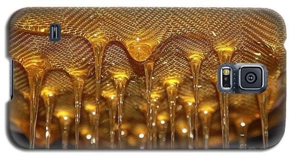 Honey Drip Galaxy S5 Case