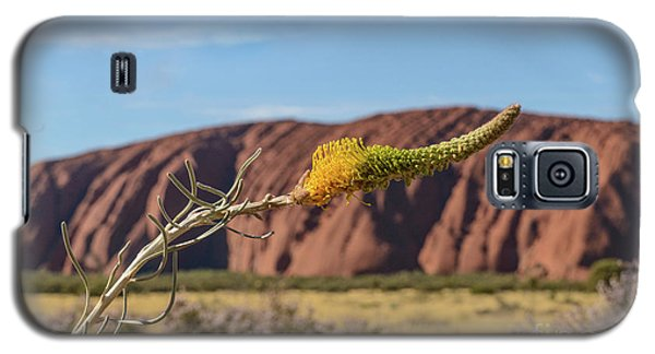 Galaxy S5 Case featuring the photograph Honey Grevillea 01 by Werner Padarin