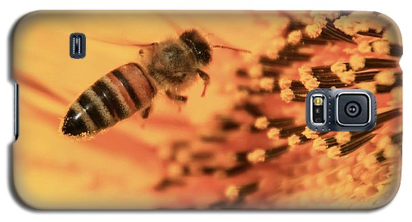 Galaxy S5 Case featuring the photograph Honeybee And Sunflower by Chris Berry