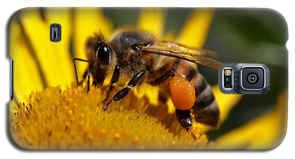 Galaxy S5 Case featuring the photograph Honeybee At Work by Rona Black