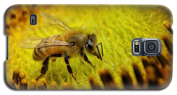 Galaxy S5 Case featuring the photograph Honeybee On Sunflower by Chris Berry