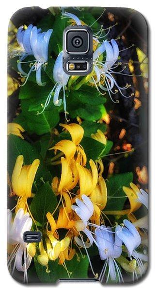 Honeysuckle Sweet Galaxy S5 Case