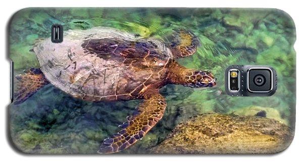 Honu Galaxy S5 Case