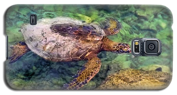 Honu Galaxy S5 Case