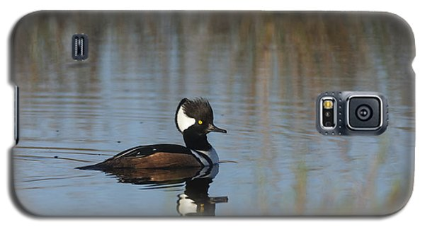Hooded Merganser In The Early Morning Light Galaxy S5 Case