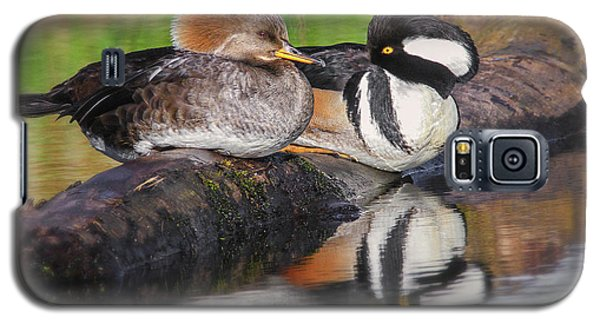 Hooded Merganser Pair Galaxy S5 Case