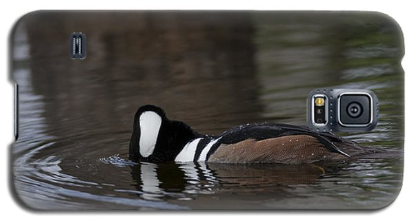 Hooded Merganser Preparing To Dive Galaxy S5 Case