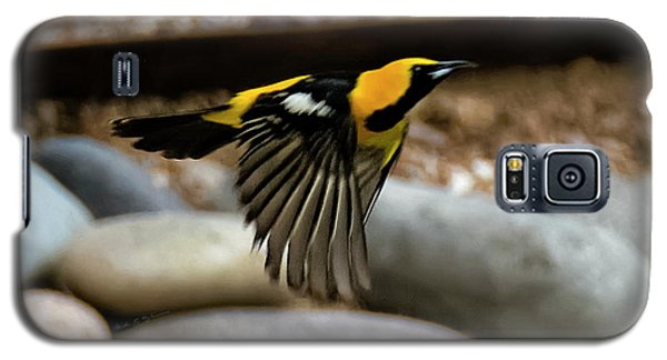 Galaxy S5 Case featuring the photograph Hooded Oriole H37 by Mark Myhaver