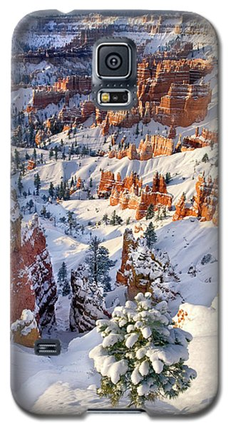 Galaxy S5 Case featuring the photograph Hoodoos And Fir Tree In Winter Bryce Canyon Np Utah by Dave Welling