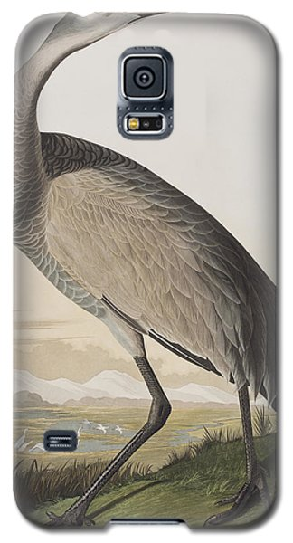 Hooping Crane Galaxy S5 Case by John James Audubon