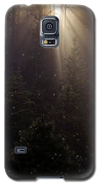 Hope And Faith - Winter Art Galaxy S5 Case