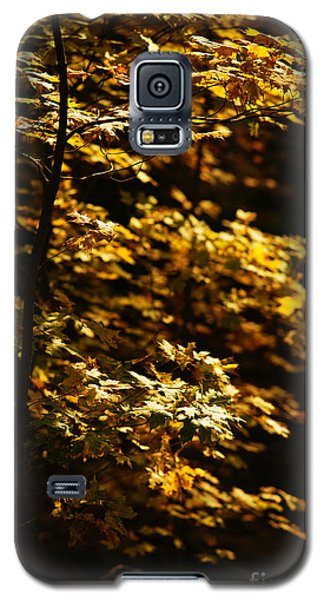 Hope Leaves Galaxy S5 Case