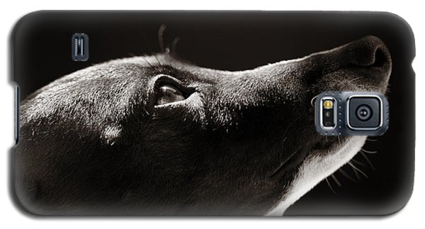 Galaxy S5 Case featuring the photograph Hopeful by Angela Rath