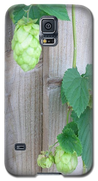 Hops On Fence Galaxy S5 Case