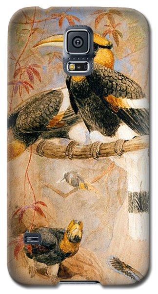 Hornbill  Galaxy S5 Case