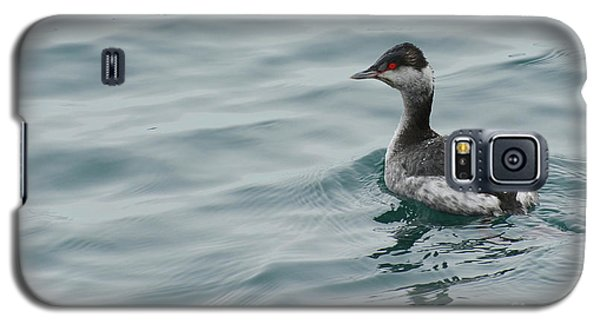 Horned Grebe Galaxy S5 Case