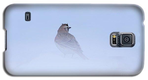 Horned Lark Galaxy S5 Case