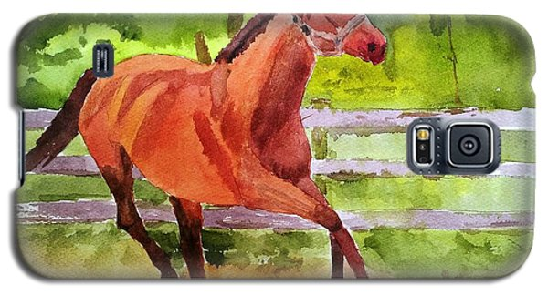 Horse #3 Galaxy S5 Case