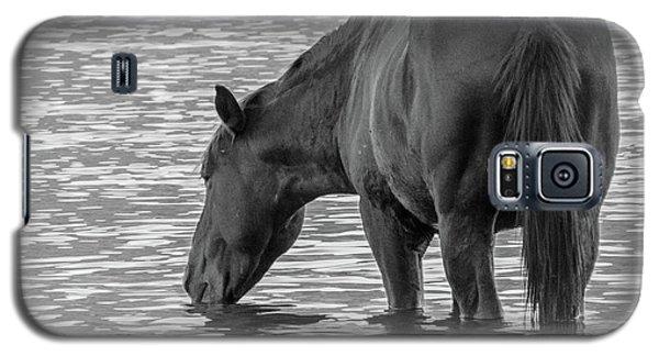 Horse 5 Galaxy S5 Case