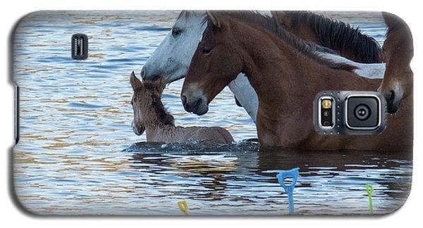 Horse 6 Galaxy S5 Case