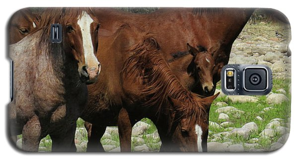 Horse 7 Galaxy S5 Case