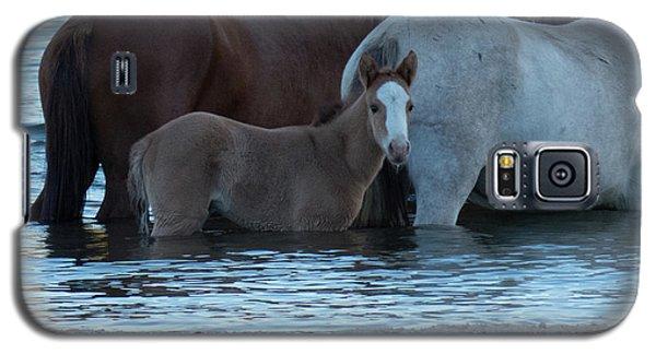Horse 9 Galaxy S5 Case