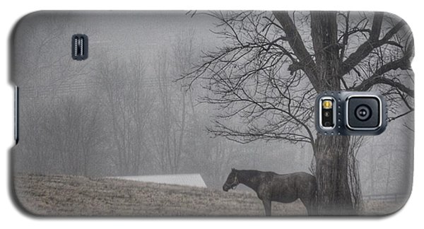 Horse And Tree Galaxy S5 Case