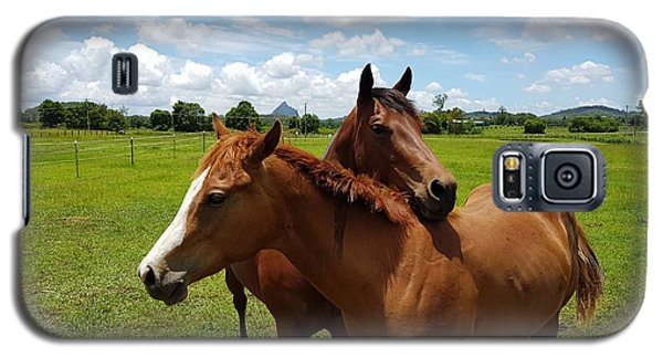 Horse Cuddles Galaxy S5 Case