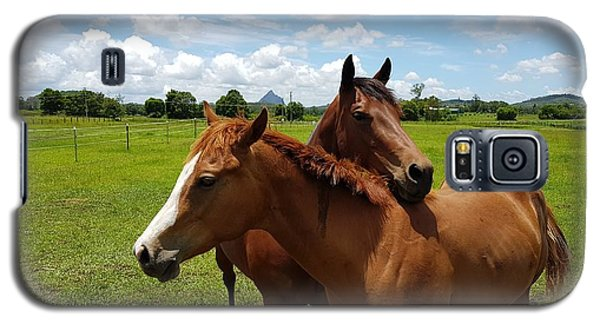Horse Cuddles Galaxy S5 Case