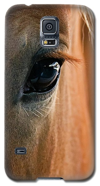 Horse Eye Galaxy S5 Case