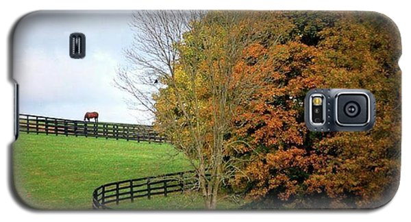Galaxy S5 Case featuring the photograph Horse Farm Country In The Fall by Sumoflam Photography
