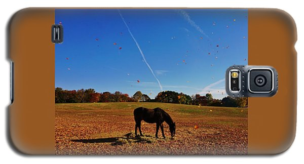 Horse Farm In The Fall Galaxy S5 Case by Ed Sweeney