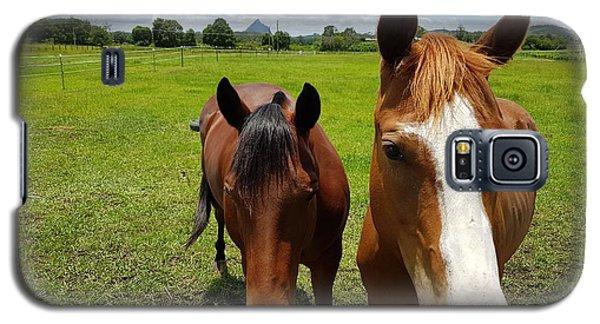 Horse Friendship Galaxy S5 Case