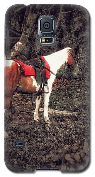 Horse In Red Galaxy S5 Case