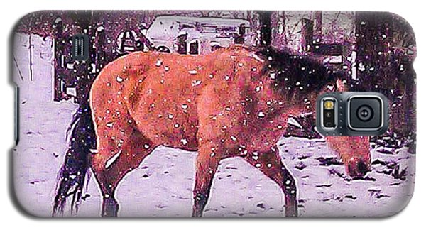 Horse In Snow Galaxy S5 Case