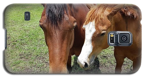 Horse Love Galaxy S5 Case