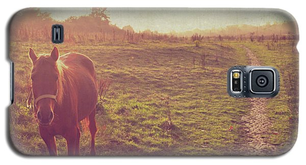 Galaxy S5 Case featuring the photograph Horse by Lyn Randle